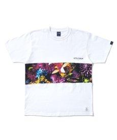 """画像1: APPLEBUM / """"Flowers"""" Mix T-shirt (1)"""