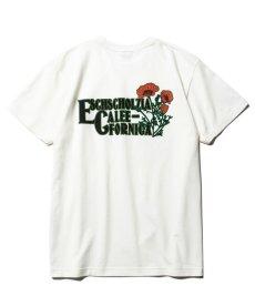 画像1: CALEE / California flowers t-shirt -WHITE- (1)