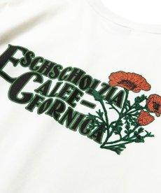 画像5: CALEE / California flowers t-shirt -WHITE- (5)